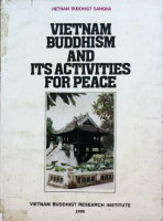 Vietnam-Buddhism-and its activities